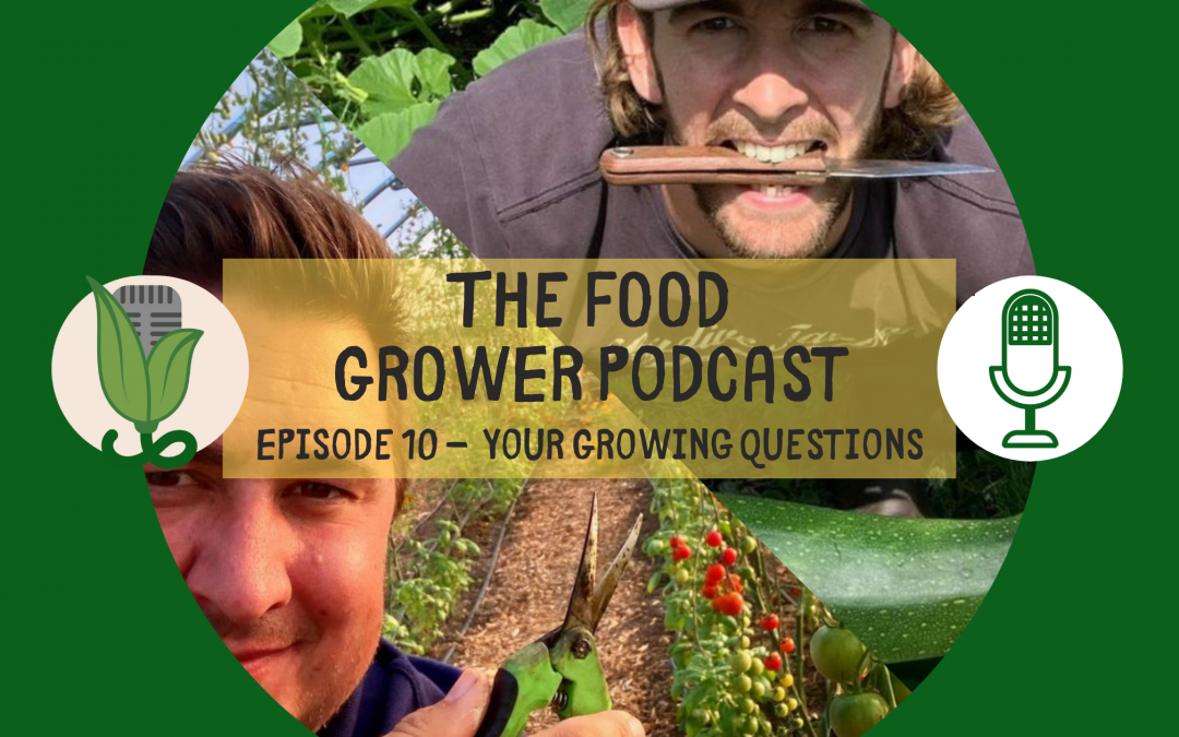 Food Grower Podcast Your Questions Blog